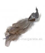 Páv na štipci dlhý chvost glitrový pás strieborný 25cm