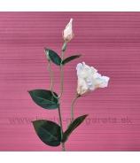 Eustoma Zápich Stonka Kvet dva puky bielobroskyňová 48cm