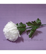 Chryzantéma na stonke 71cm