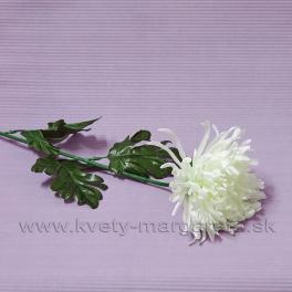 Chryzantéma na stonke krémová 71cm