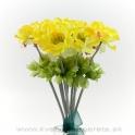 Kytica anemónky žlté
