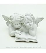 Anjelici pár s knihou