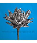 Protea malá zelená penová