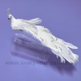 Páv biely FLITROVANÝ s kamienkami, na štipci 30cm
