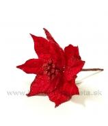 Poinsettia Vianočná ruža Mikroplyš 10cm biela