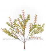 Rastlinka praslička Ambulia zeleno-lososová 35cm
