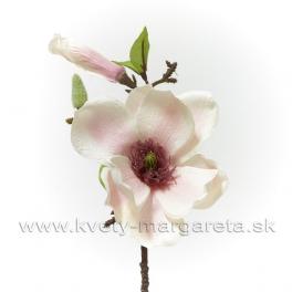 Vetva Magnólia s pukmi bielo-rúžová 35cm