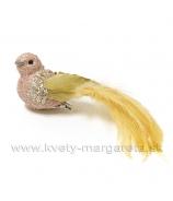 Vtáčik lososové telo a žltý chvost 15 cm