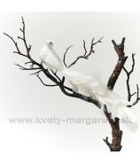Vtáčik Páv biely s kvietkami 30cm