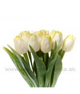 Tulipán plast žltý