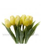 Tulipán plast žltý Lemon yellow